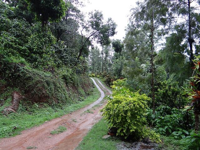 trail-345401_640.jpg